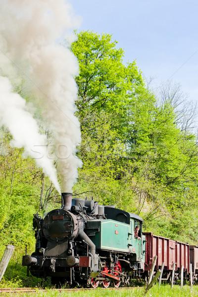 Gőz vonat utazás Európa kint közlekedés Stock fotó © phbcz