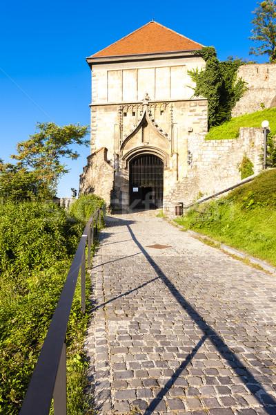 Poort kasteel Bratislava Slowakije architectuur Europa Stockfoto © phbcz