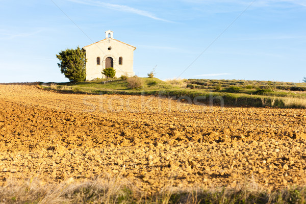 chapel with field, Plateau de Valensole, Provence, France Stock photo © phbcz