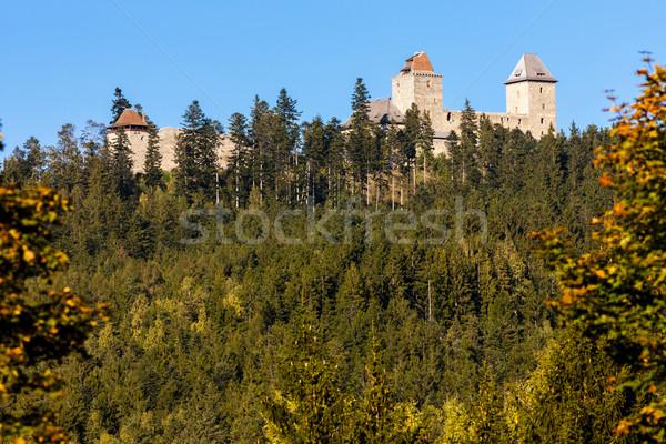 Ruiny zamek Czechy budynku jesienią architektury Zdjęcia stock © phbcz
