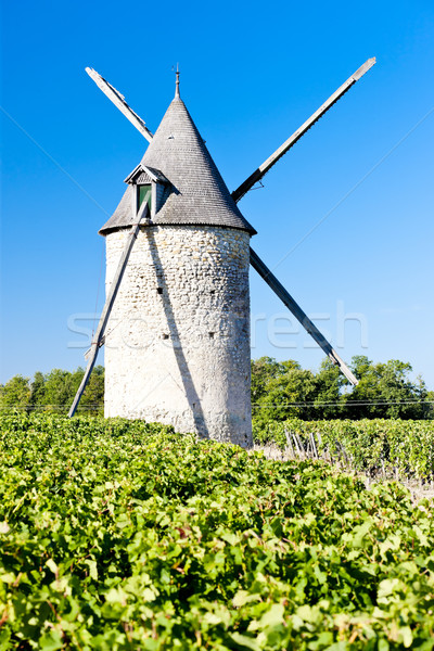 windmill with vineyard near Blaignan, Bordeaux Region, France Stock photo © phbcz