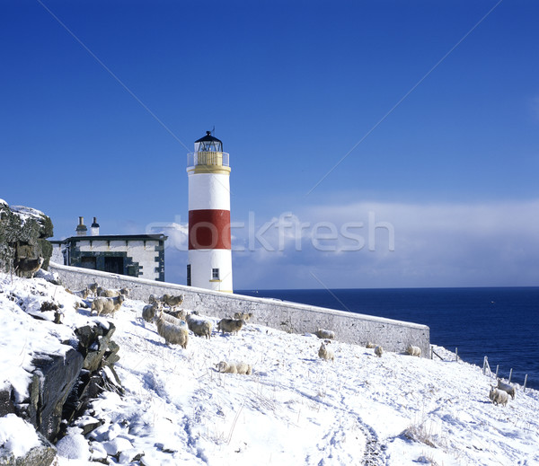 lighthouse, Mid Clyth, Highlands, Scotland Stock photo © phbcz