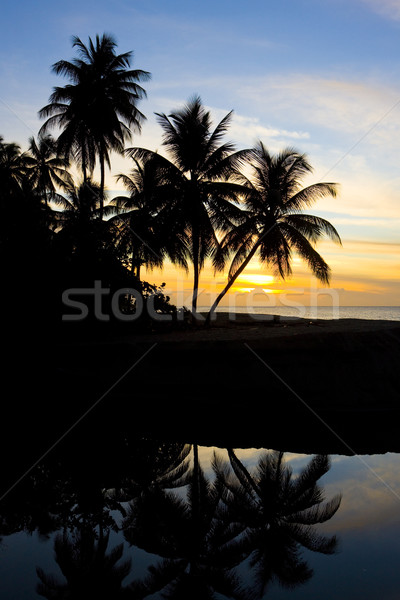 Stock photo: sunset over Caribbean Sea, Turtle Beach, Tobago