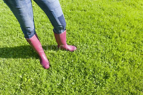 Dettaglio donna indossare stivali di gomma prato erba Foto d'archivio © phbcz