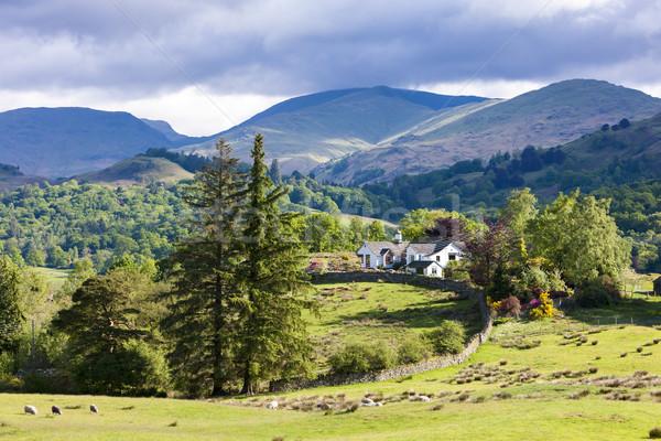 Landschap Engeland huis boom Europa Stockfoto © phbcz