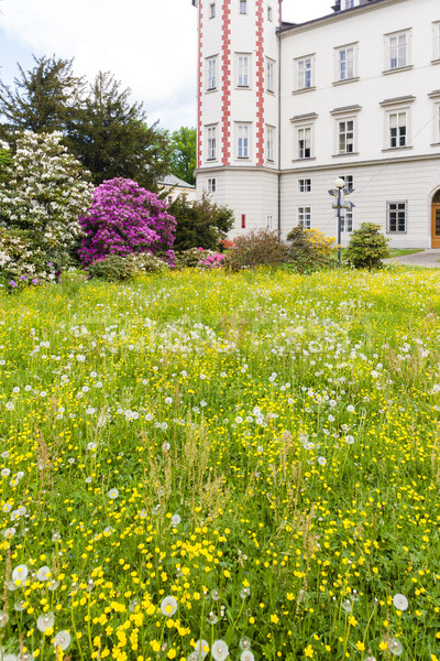 Palace Vrchlabi with garden, Czech Republic Stock photo © phbcz