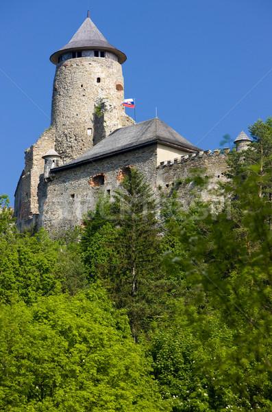 Castelo Eslováquia edifício arquitetura história ao ar livre Foto stock © phbcz