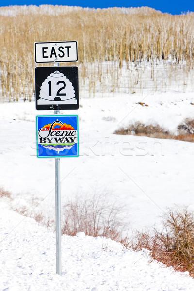 Scénique route nombre 12 Utah USA Photo stock © phbcz
