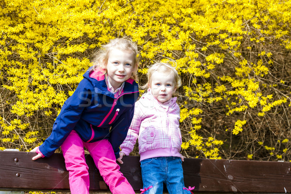 two little girls sitting on bench in spring Stock photo © phbcz