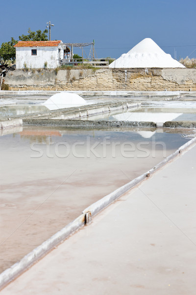 saline in Troncalhada, Beira, Portugal Stock photo © phbcz