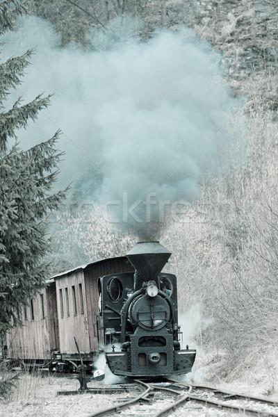 Vapor trem ferrovia Eslováquia fumar viajar Foto stock © phbcz