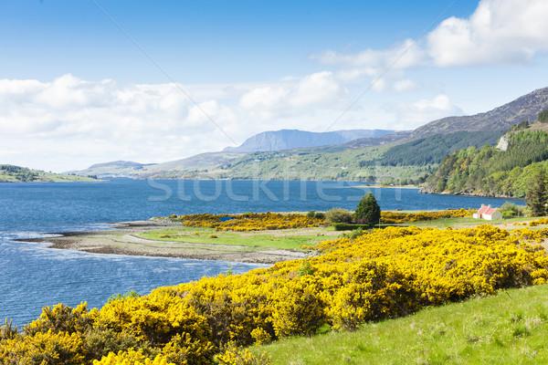 Loch Broom, Highlands, Scotland Stock photo © phbcz