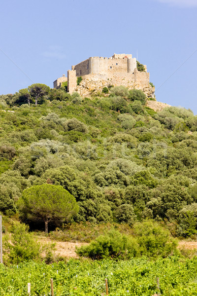 Chateau-Saint-Martin with vineyard, Languedoc-Roussillon, France Stock photo © phbcz
