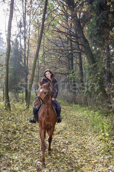 馬に乗って 自然 女性 馬 ストックフォト © phbcz
