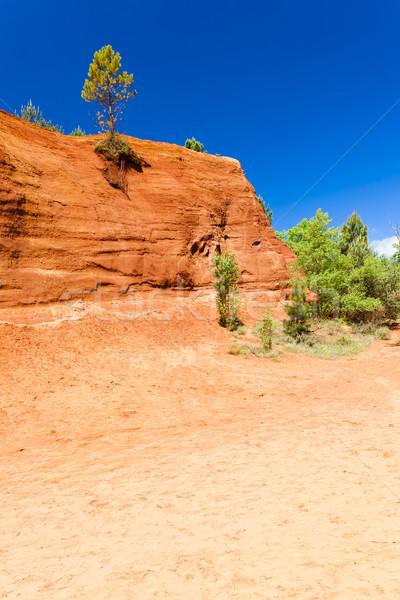 Colorado Frankrijk boom reizen rock Europa Stockfoto © phbcz