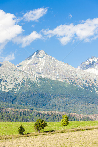 Krivan Mountain and Western part of High Tatras, Slovakia Stock photo © phbcz