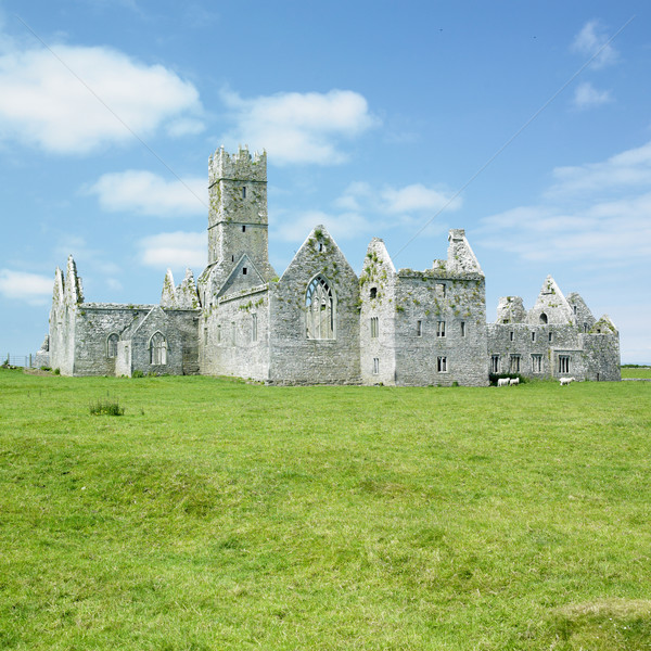 Ross Errilly Priory, County Galway, Ireland Stock photo © phbcz