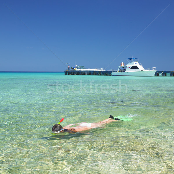 snorkeling, Mar Stock photo © phbcz