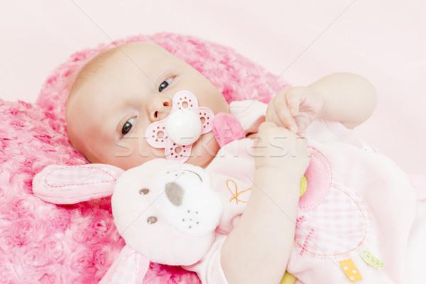 Portret drie maanden oude speelgoed Stockfoto © phbcz