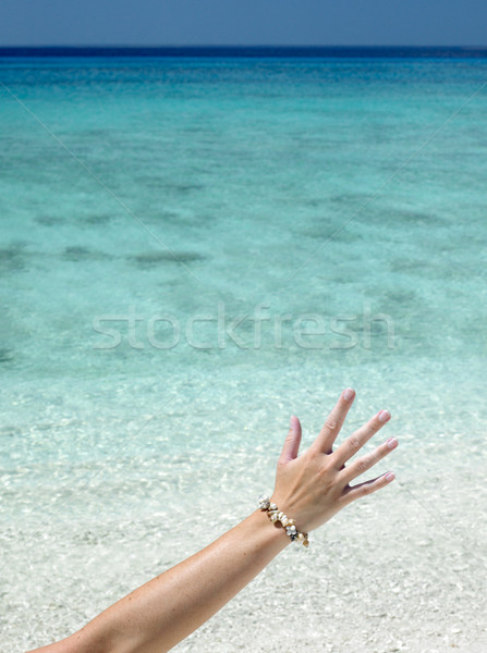 hand with shell bracelet, Mar Stock photo © phbcz