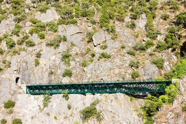 railway viaduct near Tua, Douro Valley, Portugal Stock photo © phbcz