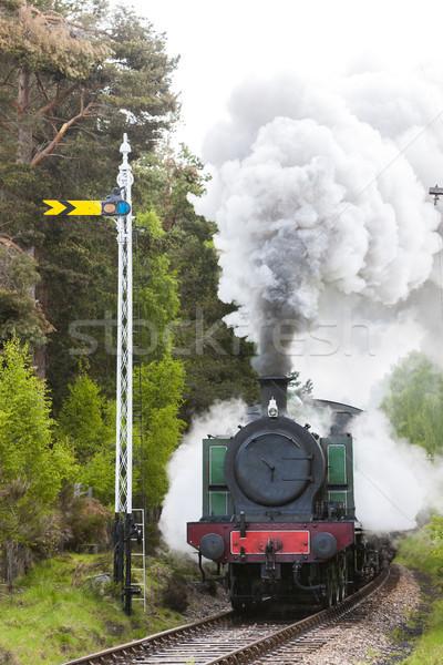 Stoom trein spoorweg hoogland Schotland rook Stockfoto © phbcz