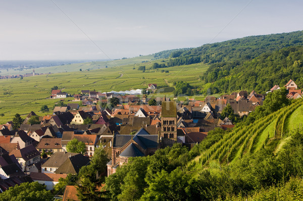 village in Alsace, France Stock photo © phbcz