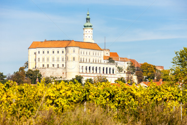 Mikulov with autumnal vineyard, Czech Republic Stock photo © phbcz