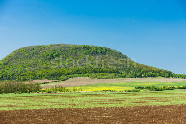 Czechy Europie Hill dekoracje naturalnych odkryty Zdjęcia stock © phbcz