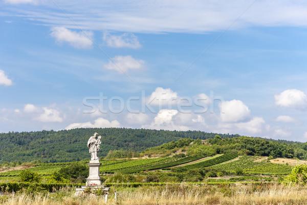 Statue saint vignoble baisser Autriche paysage Photo stock © phbcz