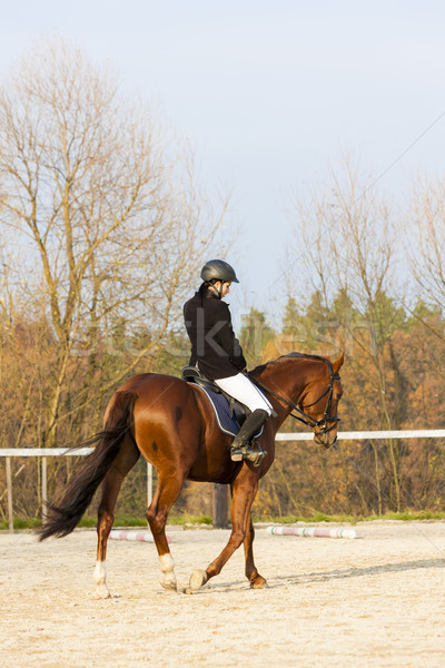 верхом женщины лошади работает осень Сток-фото © phbcz