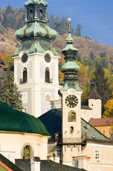 Stadhuis oude kasteel Slowakije gebouw architectuur Stockfoto © phbcz