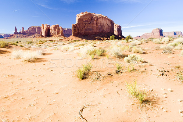 Vadi park ABD seyahat kaya manzara Stok fotoğraf © phbcz