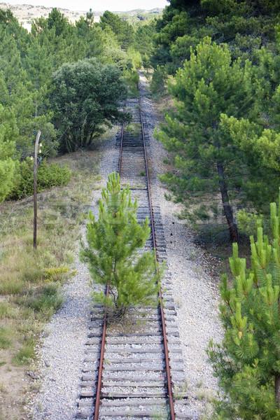 overgrown tracks Stock photo © phbcz