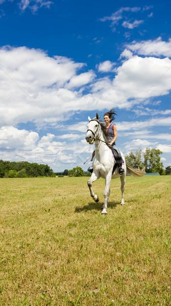 Paardenrug vrouw vrouwen paard paarden Stockfoto © phbcz