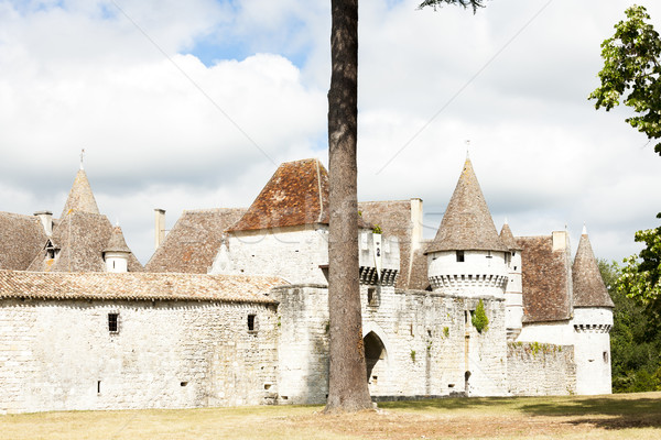 Kasteel afdeling Frankrijk reizen architectuur Europa Stockfoto © phbcz