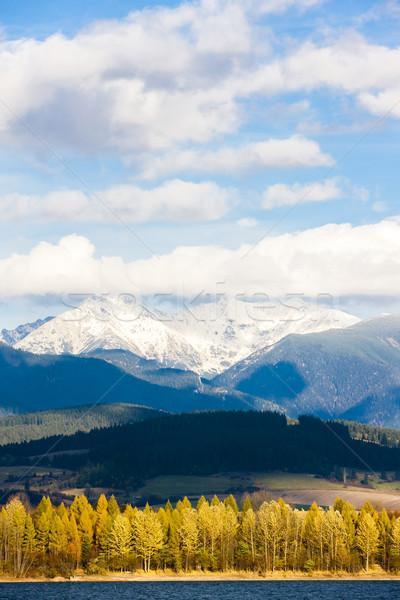 западной Словакия снега осень Европа молчание Сток-фото © phbcz