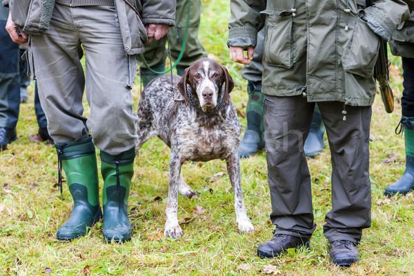 Cão caça homens pessoa lazer caça Foto stock © phbcz