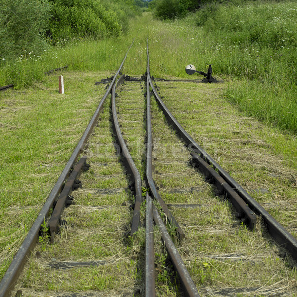Hout spoorweg Polen vervoer track schakelaar Stockfoto © phbcz