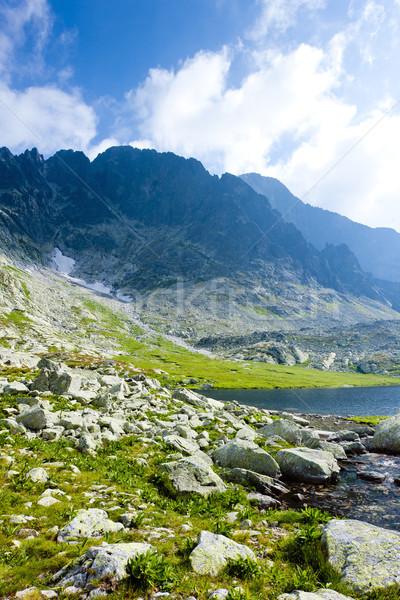 Vijf hoog Slowakije landschap bergen park Stockfoto © phbcz