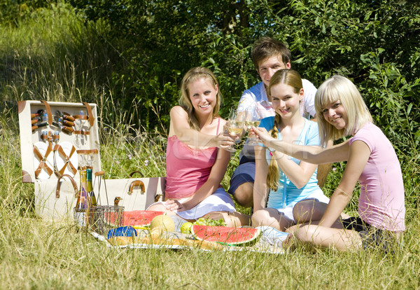 friends at a picnic Stock photo © phbcz