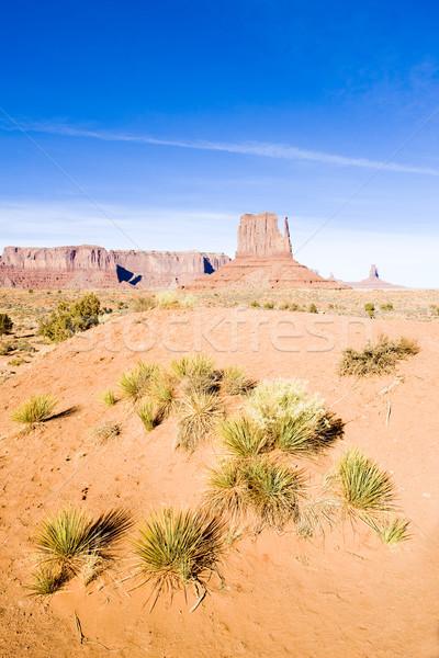 The Mitten, Monument Valley National Park, Utah-Arizona, USA Stock photo © phbcz