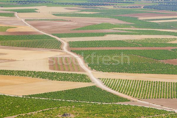 landscape near Consuegra, Toledo Province, Castile-La Mancha, Sp Stock photo © phbcz