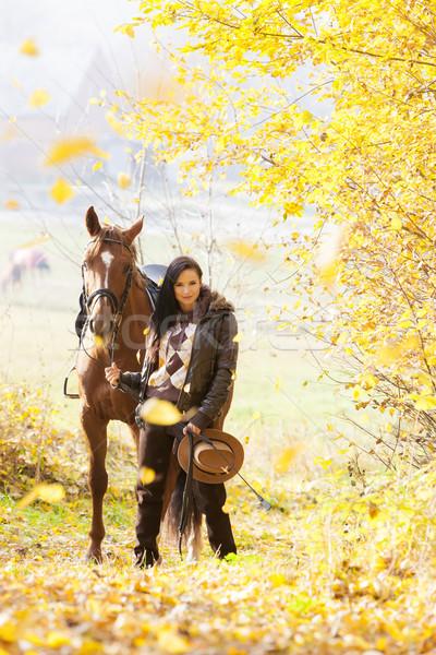Lovas ló őszi természet nők ősz Stock fotó © phbcz