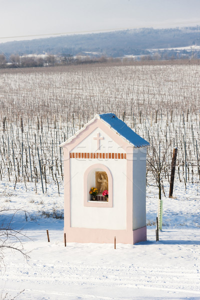 God's torture near Hnanice with winter vineyard, Southern Morav Stock photo © phbcz