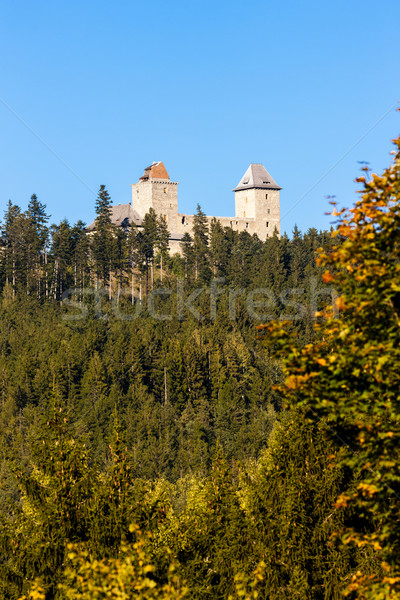 ruins of Kasperk Castle, Czech Republic Stock photo © phbcz