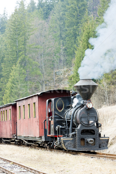 steam train, Ciernohronska Railway, Slovakia Stock photo © phbcz