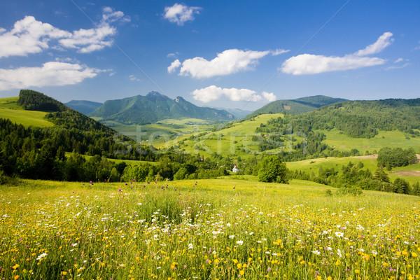 Mala Fatra, Slovakia Stock photo © phbcz