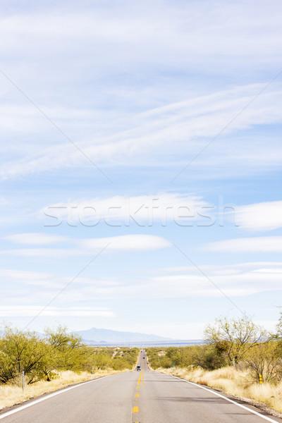 Straße Arizona USA Landschaft Stock foto © phbcz