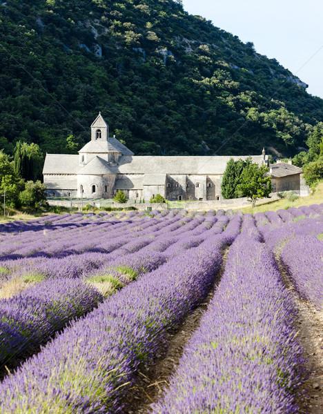 Abadia campo de lavanda França flor edifício arquitetura Foto stock © phbcz